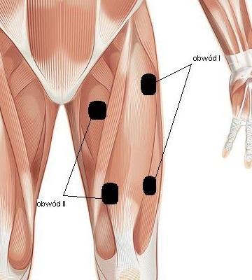 rwa udowa rozmieszczenie elektrod w terapii tens