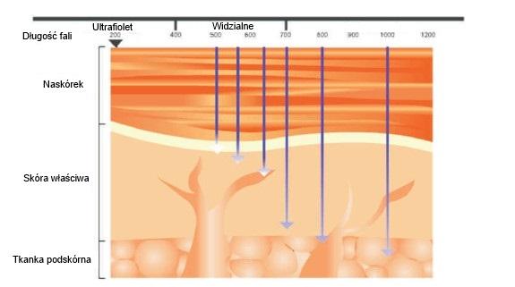 Głębokość penetracji tkanki 575